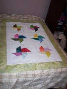 Quilts I have done
