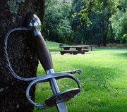 Swords on the Green