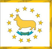 Rhode Island Corgis
