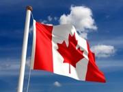 Canadian Corgi's Go!!!