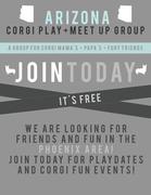 Arizona Corgi Play+Meet Up Group