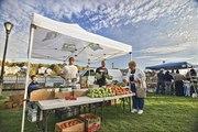 TODAY: Last Fair Haven CitySeed Farmers's market of this season