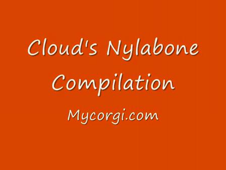 Cloud's Nylabone Compilation
