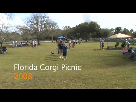 2008 Florida Corgi Picnic