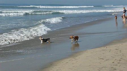 11 22 2009 Huntington Beach