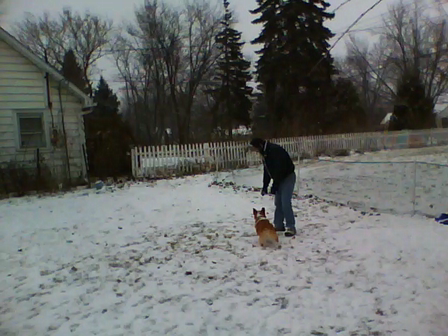 Please throw the snowball!!