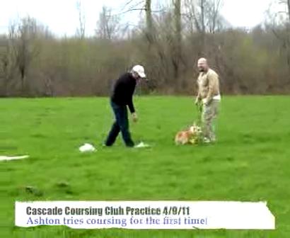 Coursing Practice