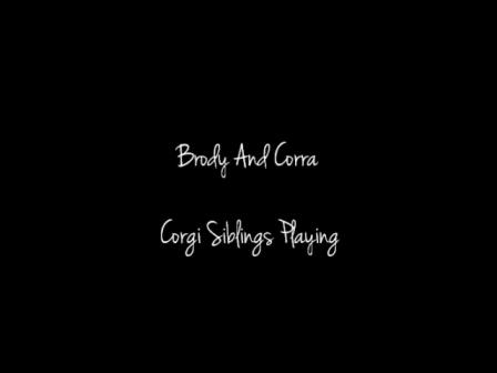 Brody Corra Play 2