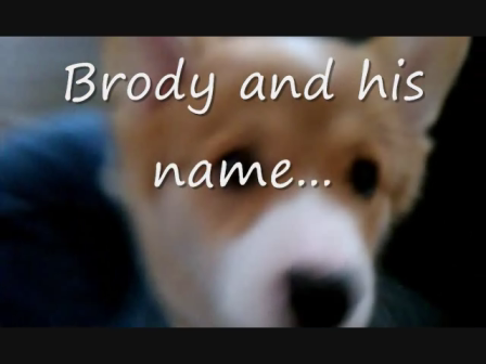 BRODY AND HIS NAME