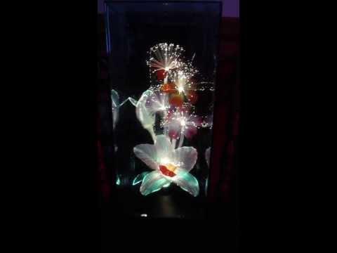 Fiber Optic Music Box Flower Lamp