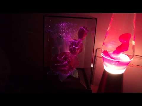 Aug 18, 2014 -Fiber Optic Rose