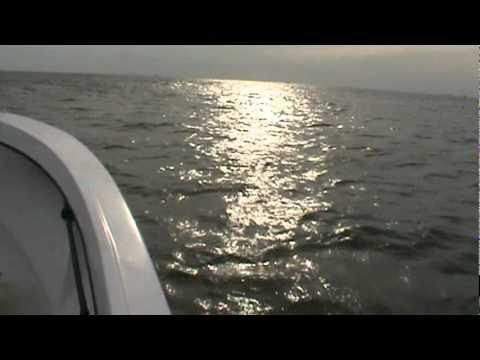 Formula 233 Ocean ride
