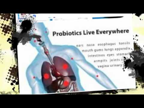 Perfect Biotics ( http://www.nationalhealthadvisor.com/perfect-biotics )