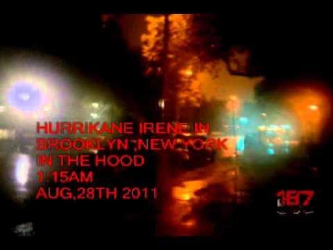 187 DVD(2011 HURRIKANE IRENE) IN BROOKLYN