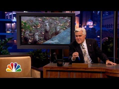 @VirgoPeridot on Copy Cats - The Tonight Show with Jay Leno