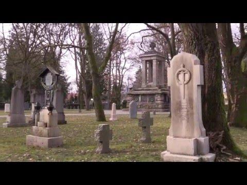 Salzburg - Kommunalfriedhof