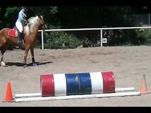 Jumping Lesson - Karen & Majesty