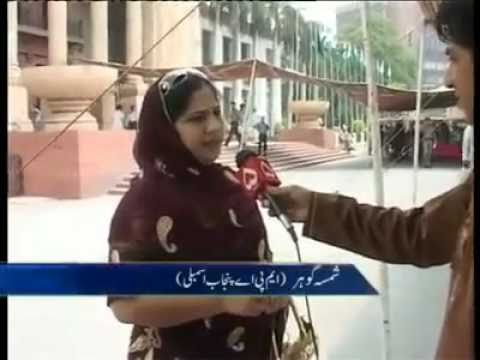 FUNNY PAKISTANI MNA & MPA CANT SPEAK ENGLISH