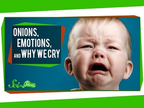 Onions, Emotions, and Why We Cry???