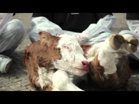Silent PETA Protest in Berlin (Redubbed with soundtrack by VoiceOfTheVoiceless)
