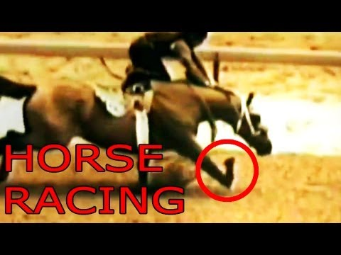 Horse Racing in 60 Seconds Flat