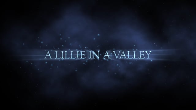A Lillie In A Valley Trailer
