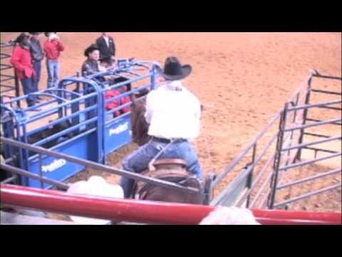 Trevor Brazile on Texaco No Bridle 7.8 Fort Worth Horse Showmedium.m4v