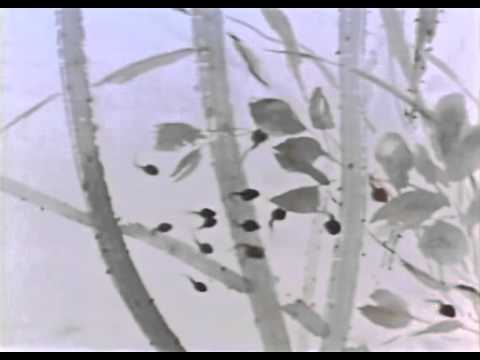 "Animation from Chinese paintings - ""Little Tadpole Looking for Mom"""