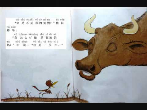 "Read a Kid's Book in Chinese ""Are you my mother?"""