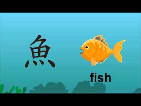 Chinese character for Fish 鱼 yú