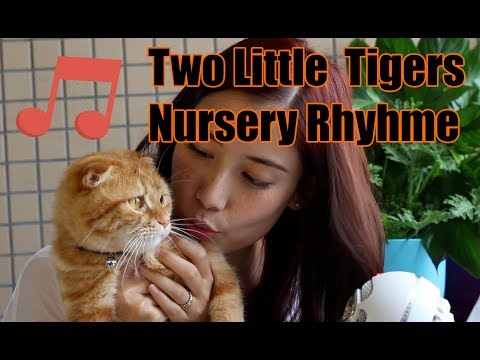 Two Little Tigers Nursery Rhyme with Fiona