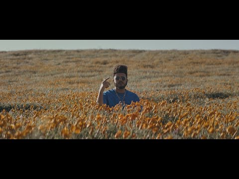 Blu & Exile - True & Livin' (Official Video)