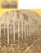 1872 Colliseum Interior