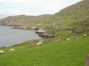 Beara peninsula, Co. Cork