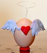 """""""A Good Egg"""" (1)"""