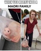 Maori tolerance