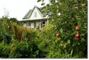Looking for a lawn in Benicia to convert (for free!) into a demonstration permaculture food forest fed by a laundry-to-landscape greywater system!