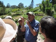 Become A Native Plant Docent