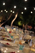 Dine & Dance Under The Redwoods - SOLD OUT