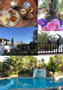 Yogaretreat & vegan, yogic Food Ibiza