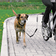 Bikers for Barkers