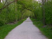 Chicagoland Bike Trails - News & Conditions