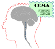 COMA projects