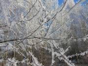 Зимний узор
