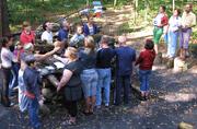 Закладка энергоинформационных программ в дрова