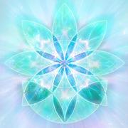 Healing Flower.