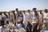Save Houbara Save Nature