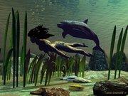 Дельфины 3д
