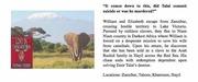 Lost in Tanganyika Introduction