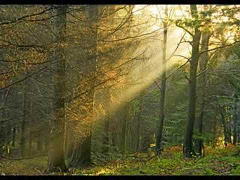 Ray of Hope (Луч надежды)